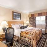 Best Western Plus Lincoln Sands Oceanfront Suites Guest Bedroom